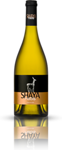 Shaya Habis